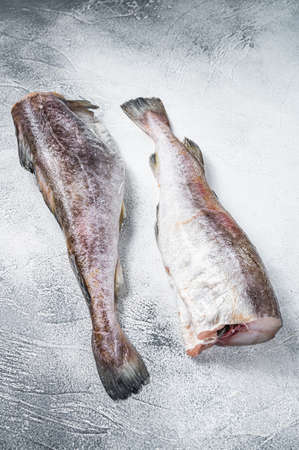 Raw cod whole fish on kitchen table. White background. Top view