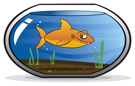 Shark disguised as a goldfish Stock Vector - 17222255
