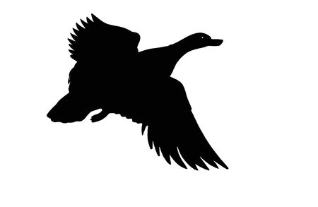 silouette wooden flying duck made from several pieces of wood photo
