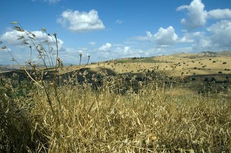 israel landscape Stock Photo - 7178825