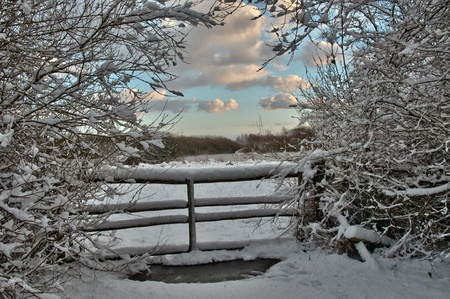 winter and snow in Holland Stock Photo - 9614551