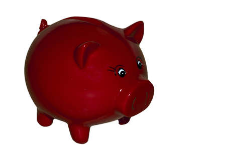 red money pig on wooden background photo
