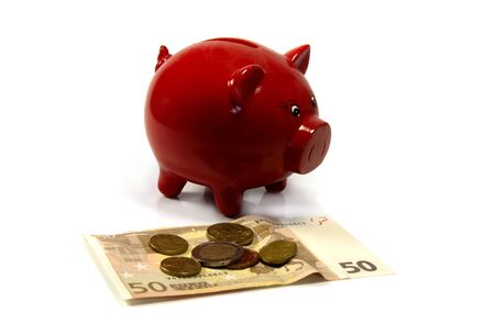 red money pig with euro paper and coins photo