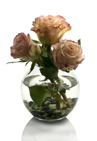 vase with orange roses isolated on white Stock Photo - 13350042
