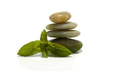 rocks and green mint plant on isolated white photo