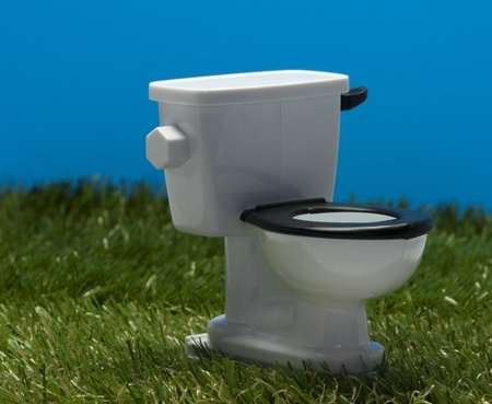 outside white toilet in the grass