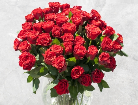 bunch of hearts: vase with red roses with sunlight on the flowers