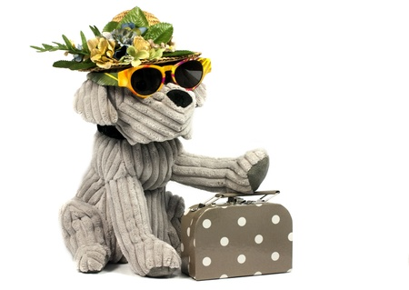 dog going to travel with sunglasses hat and suitcase photo