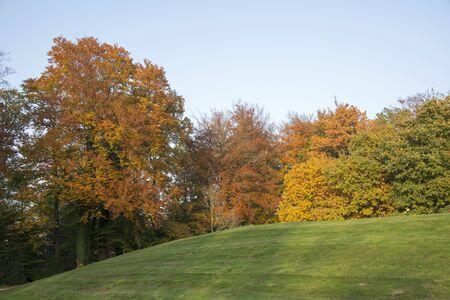 holand: landscape in autumn collors