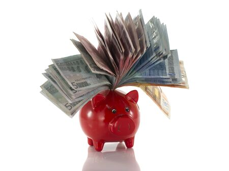 money pig with euro paper isolated on white photo