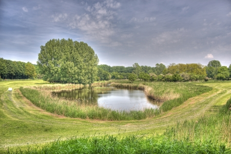 lelystad: HDR small lake in the nature park lelystad in Holland