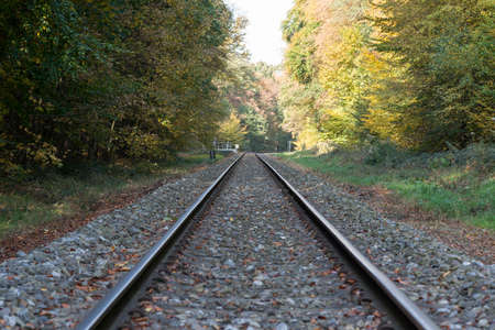 forest railroad: railroad track in autumn forest