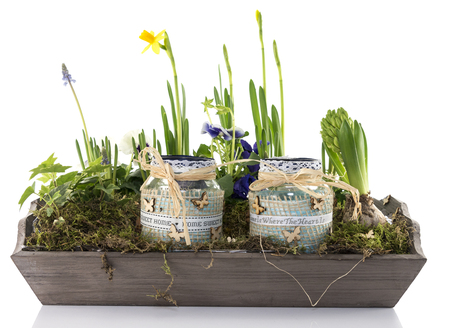 mini garden with flowers on wooden plate photo