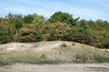 nature area called waterplas near the dutch place Rockanje