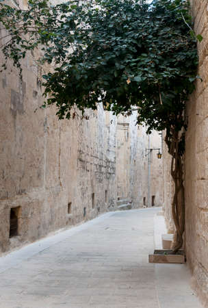 ramping: old street in the village mdina on the island Malta Stock Photo
