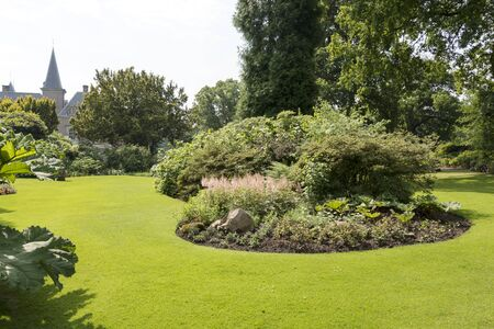 puja: pujar parque con plantas y fronteras hierba y las flores