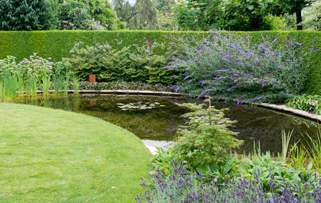 english garden with green grass near a small water and plants flowers like buddleja Stock Photo