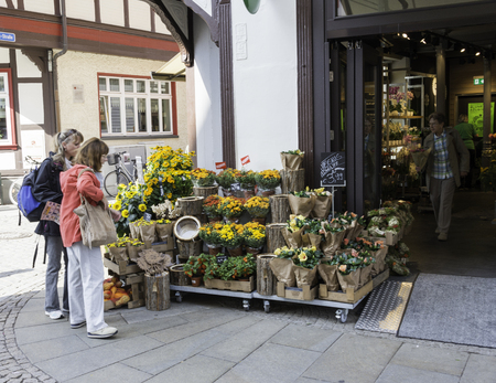 west germany: WERNIGERODE,GERMANY, SEPTEMBER 21,2016: Unidentified people in flowershop buying flowers on september 21 2016,This village was on the border of east and west Germany before the wall was destreoyed