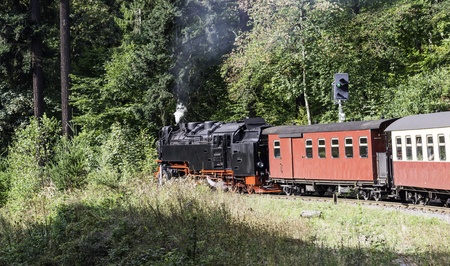 narrow gauge railroad: Narrow gauge steam engine from Brocken to Werningerode. The trains to the Brocken mountain are popular with tourists and operate around the year. Stock Photo