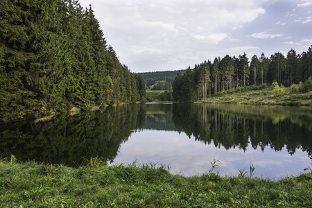 brocken: nice walking area in the forest near brocken mountain in harz germany with trees and water ponds Stock Photo