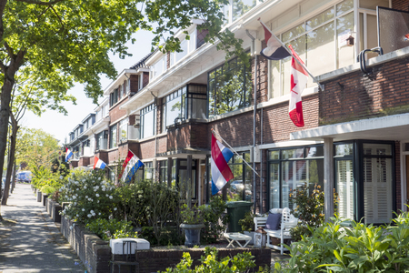dutch flags on liberation day