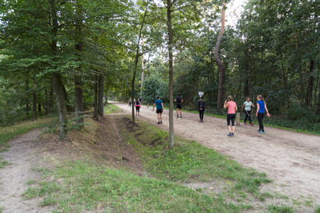 Weetr,Holland,01-sep-2020:people doing workout in the forest outdoor, running and exercises, because of corona indoor is temporarily closed
