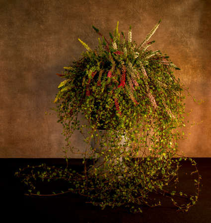still life like a waterfall of flowers in a tall pot with heather and ivy Banco de Imagens