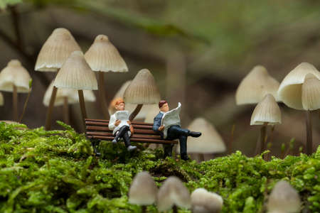 small figures reading the newspaper and resting under the fungus mycena arcangeliana in the forest in holland Banco de Imagens
