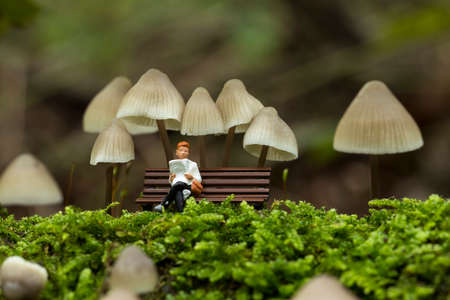 a small figure reading the newspaper and resting under the fungus mycena arcangeliana in the forest in holland Banco de Imagens