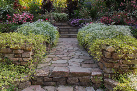 garden with flowers at both sides of the path