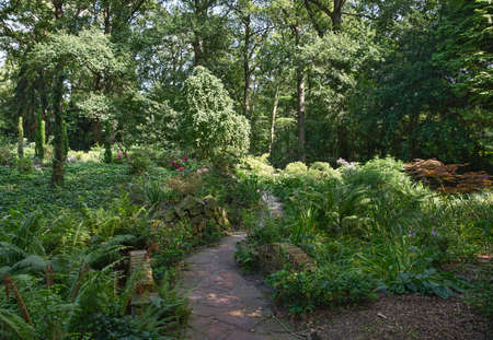 green english garden with plants and trees