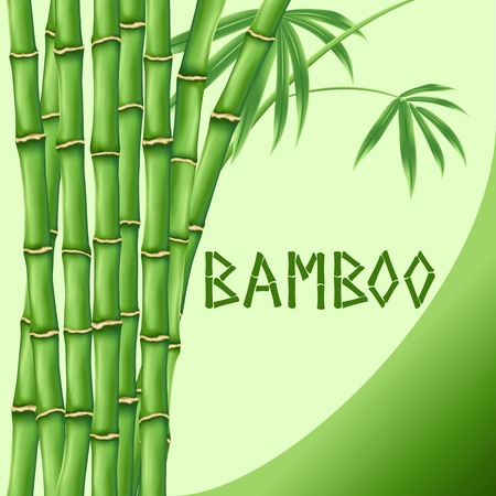 tall grass: Bamboo on green background