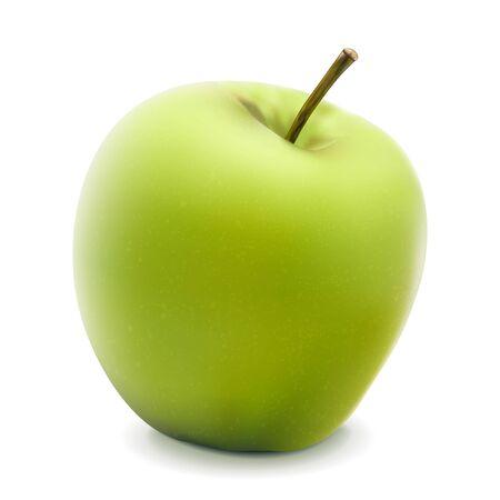 illustration of green apple isolated on white   Illustration
