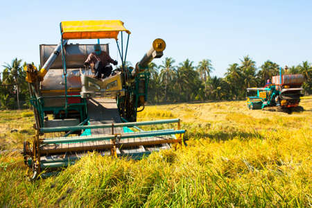Harvest Car in the rice field Stock Photo - 17567556