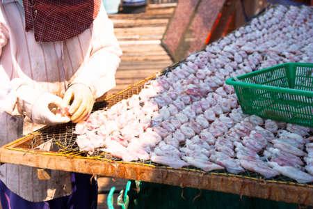 Dried squid Stock Photo - 17664415