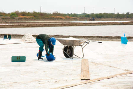 People working in the salt field photo