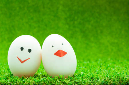 Couple eggs on green background photo