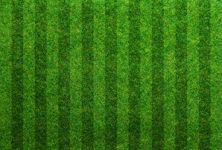 green grass soccer field background Banco de Imagens - 25842993