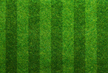 soccer pitch: Green grass soccer field background