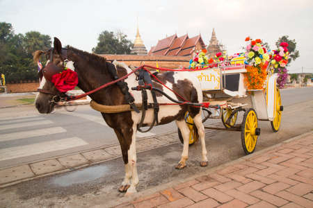 horse and carriage: Horse carriage at temple Phra That Lampang Luang, Lampang, Thailand