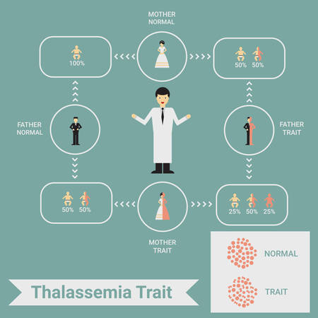 Thalassemia trait infographic