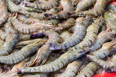 camaron: Camarón fresco en el mercado