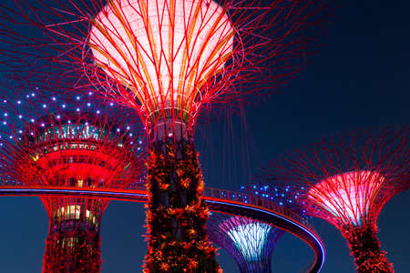 singapore: Gardens by the Bay, Singapore
