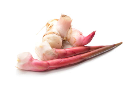 galangal: Galangal on white background