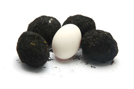 Salted egg on white background Stock Photo - 47181405