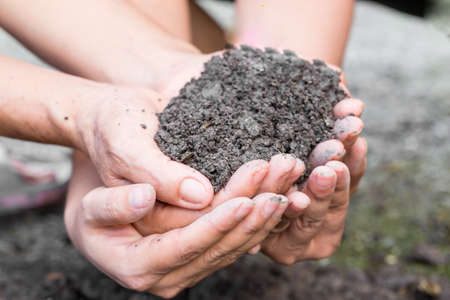fertile land: Soil in hands Stock Photo