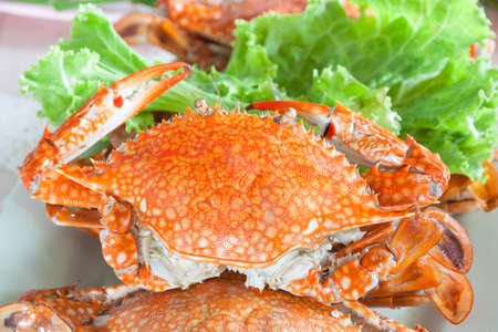 steamed: Steamed crab Stock Photo