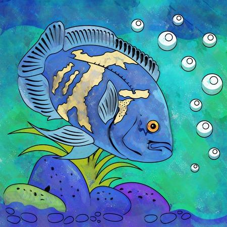 zebrafish: Fish in aquarium. Bright colorful watercolor illustration.
