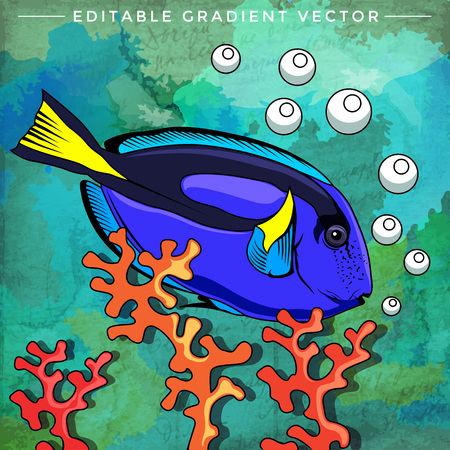ichthyology: Fish in aquarium. Bright colorful vector illustration. Illustration