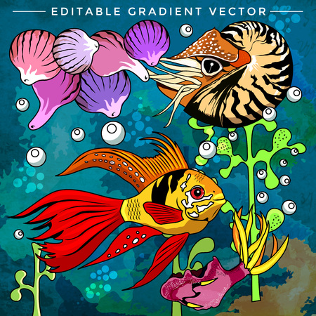 fighting fish: Fishes in aquarium. Bright colorful vector illustration.